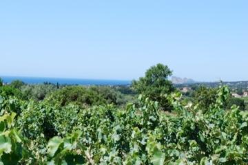 De Wijngaard Le Malisonne