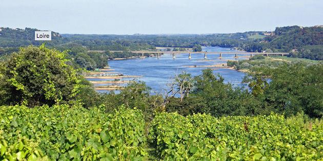 Uitzicht op de Loire, gezien vanuit een wijngaard.