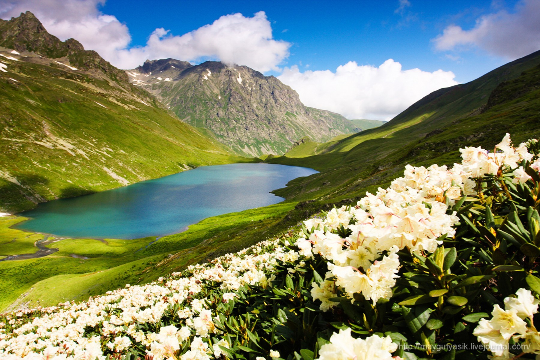 природа северный кавказ фото
