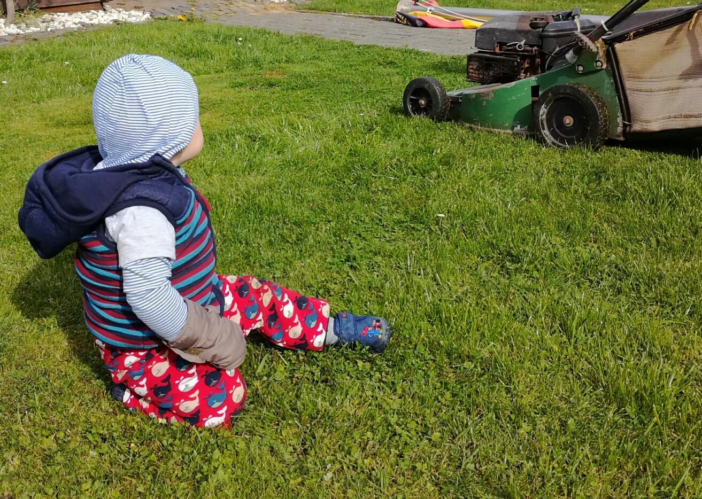 Einfach spannend: Papa mäht den Rasen.