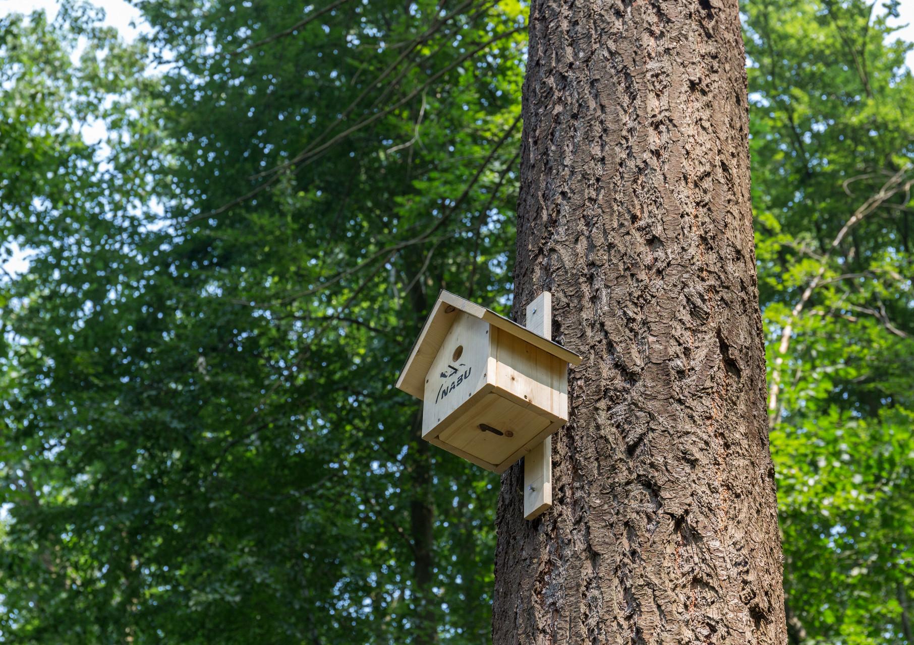 auch Vogelkästen wurden aufgehängt
