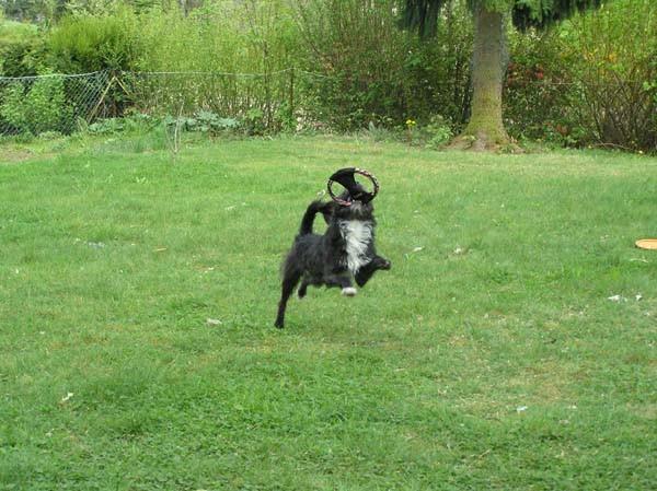 Jippiiiihhhhh, ich kann fliegen!!!!