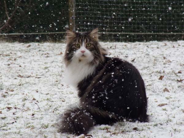Hey Tinto, motz doch nicht rum - das Wetter ist prima!!!!