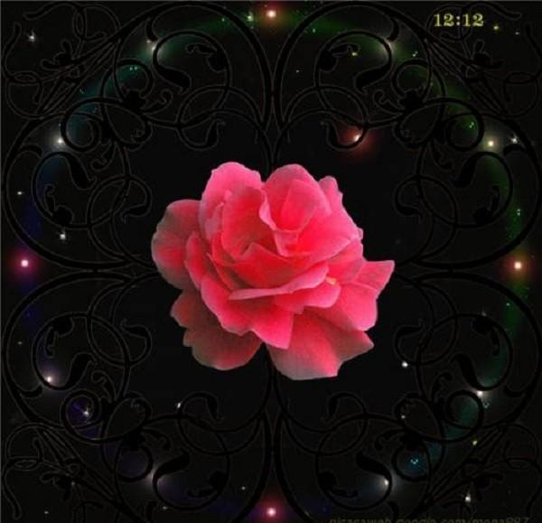 День принятия энергии розы