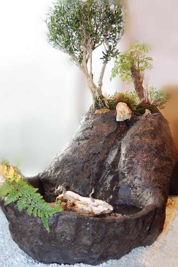 Bonsai Indoor