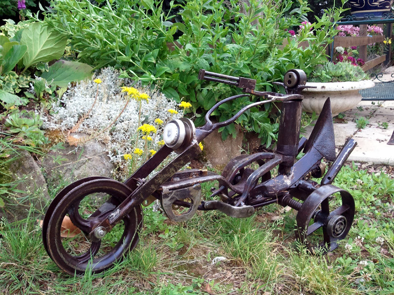 Mad Max 48 cm - 22 kg