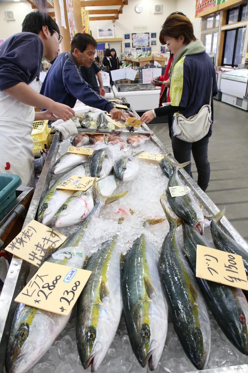 Yobuko Morning Market, Saga, Kyushu