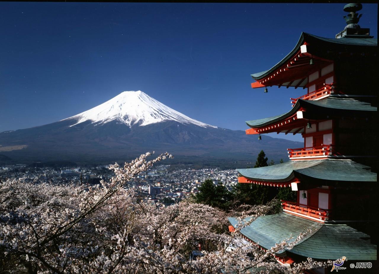 Fujiyama mit Chureito Peace Pagode, Honshu