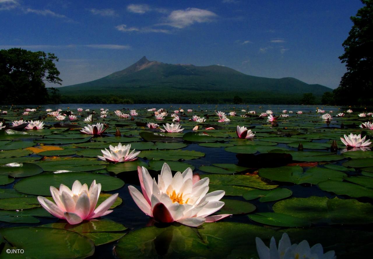 Onuma Quasi National Park, Hokkaido