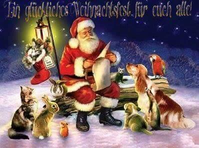 Das Team der Seelentröster - Tiere helfen Menschen e.V. wünscht allen Zwei- und Vierbeinern ein gesundes, tierleidfreies und ruhiges Weihnachtsfest. Jedes Leben ist wichtig, jedes Leben zählt...deshalb:  lebt achtsam...