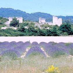 Erinnerung an die Provence