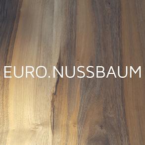 Euro Nussbaum Nahaufnahme