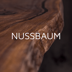 Nussbaum Nahaufnahme