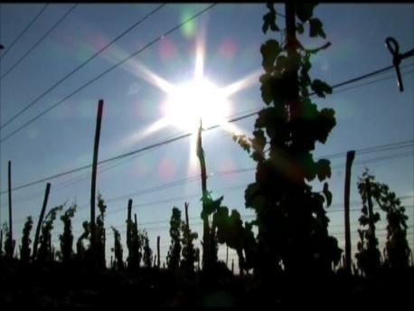 ブルガリアで最長の日照時間