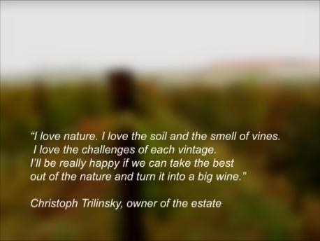 自然の最良の部分を切り取って、それを素晴らしいワインに変えること