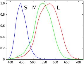 Функции цветового соответствия Стандартного колориметрического наблюдателя, определённые комитетом CIE в 1931 году на диапазоне длин волн от 380 до 780 нм (с 5 нм интервалом).