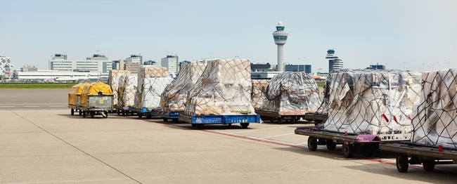 Schiphols' cargo business becomes part of the cluster Airport Operations (AO)  -  image: AMS