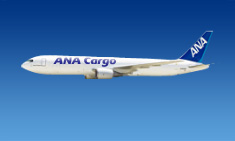 ANA Cargo operates Boeing 767 freighters on the route Okinawa-Tokyo  -  courtesy ANA