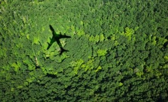 Learning to go green in aviation. Image: IATA