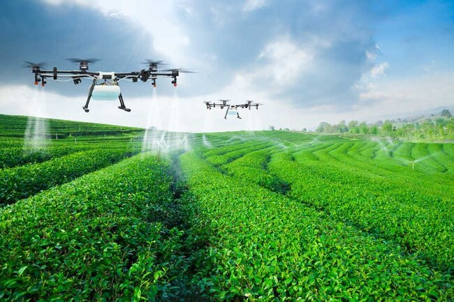 Drones enhancing soil by spraying additional layers of LNC on a plantation built on once arid land – animation: Arabian Business
