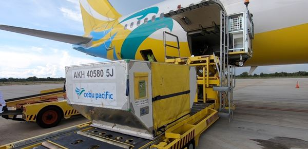 Counting on Jettainer's expertise. Image: Cebu Pacific