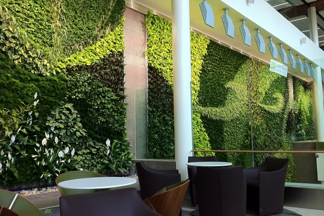 Air purifying art: one of the many green walls adorning YEG's terminals and facilities