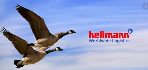 Even Hellmann's famous geese could be tracked by SmartAir! when flying from A to B and onto C  -  logo: Hellmann Worldwide Logistics