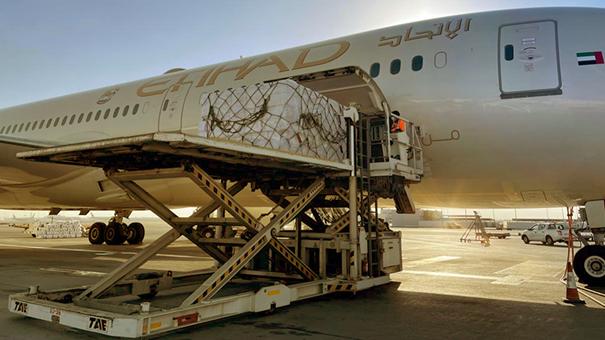 Flying vaccines via the desert to the pyramids. Image: Etihad