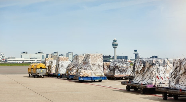 Thanks to the upcoming digital pre-notification of air freight consignment, goods will flow faster in AMS  -  company courtesy