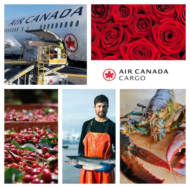 It's cool to be cargo in Canada... Image: Air Canada Cargo