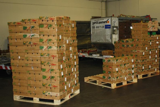 Perishables flown from Frankfurt to Doncaster Sheffield Airport, UK  -  photo: CFG /hs