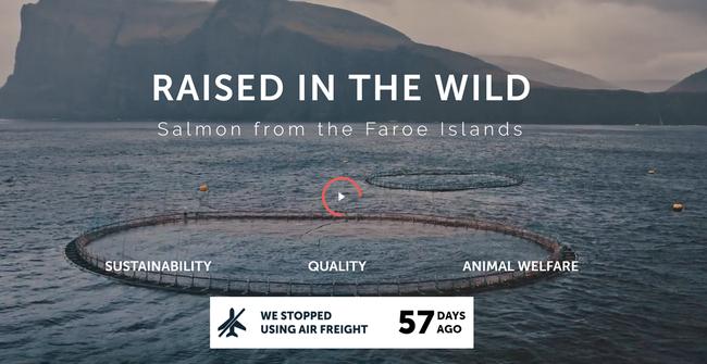Fish Flygskam/Flugscham/Flight Shame - image: Hiddenfjord