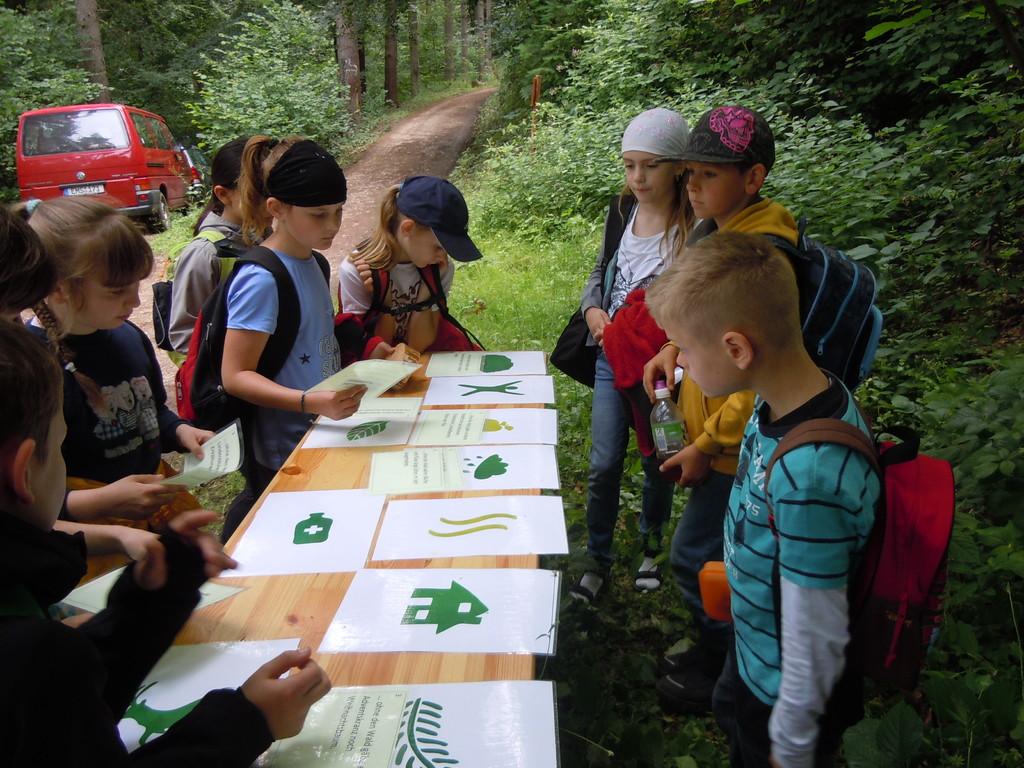 Dem Logo für das Jahr der Wälder mussten 10 Bedeutungen zugeordnet werden...
