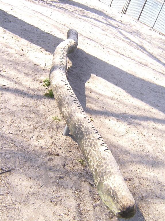 Auf unserem Schulhof gibt es eine liebe Schlange...