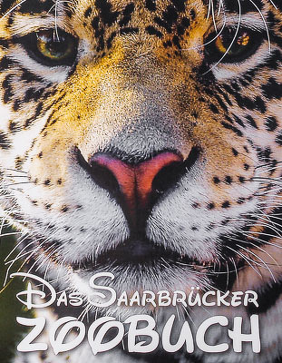 Jaguar Badajos aus dem Zoo Saarbrücken. Foto: Erich Jöckel