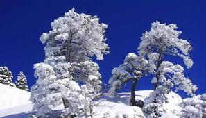 Vacances a la neige vercors