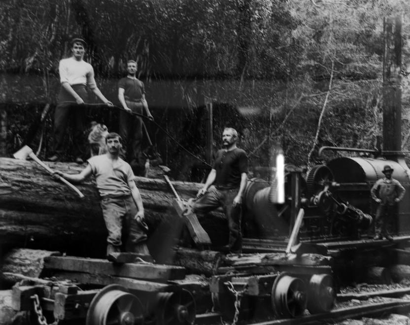 Hauling timber with bush locomotive (c. 1890s Tyree Studio - Photo of photo in Community Centre)