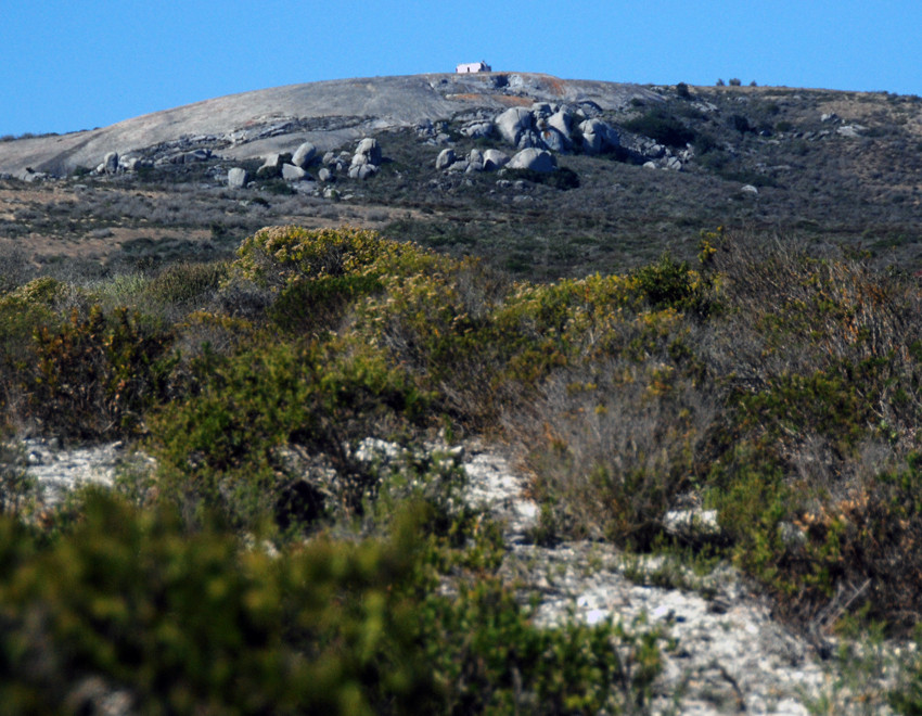 Granite hills and fynbos, Langeban