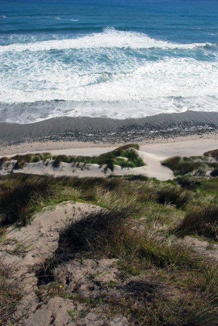 I pulled over on a narrow verge above the crashing waves and sparkling Tasman Sea.