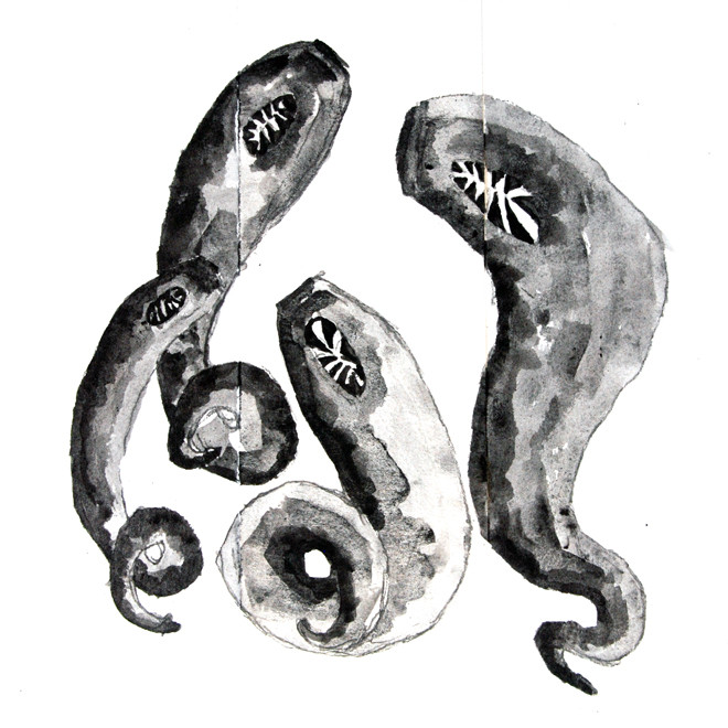 Leeches 2007 (Ink) (25x25) Fergus Murray