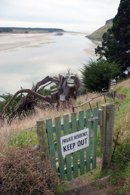 Betty's Bach and tree stump on the Papanui Inlet