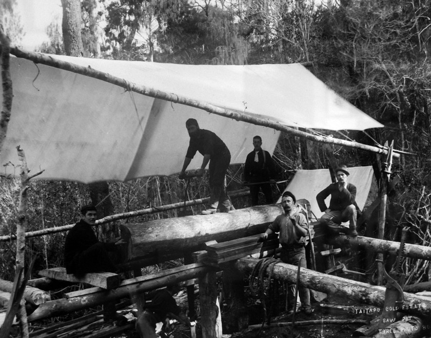 Taitapu Gold Estates: Saw Pit (c. 1880s Tyree Studios ). The mine was near Lake Otuhie. (Photo of photo in Community Centre