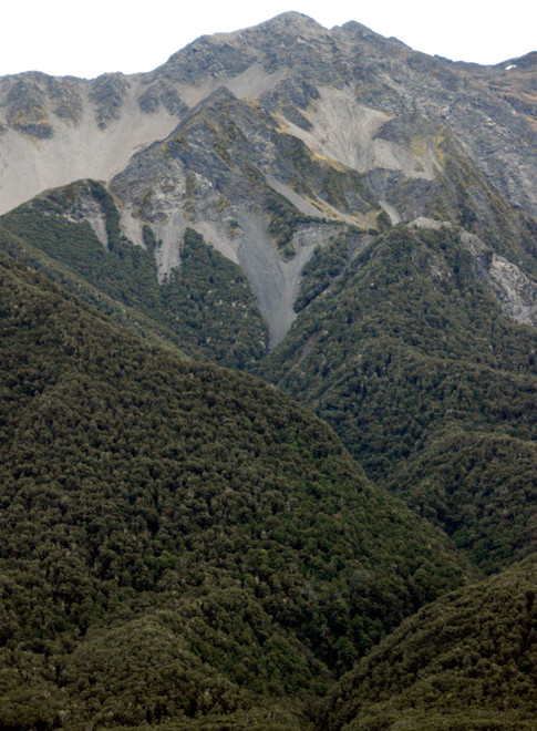 High peaks above the 1200m treeline in the Waimakariri valley