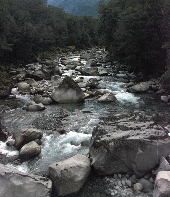 The icy waters of the Tutoko River on the Milford Road.