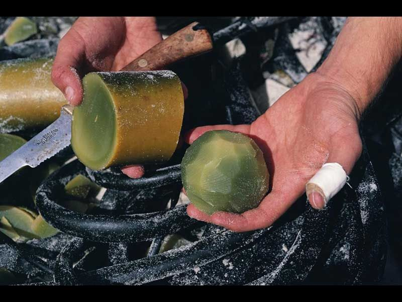 Cricket ball fashinoned from Bull Kelp stipe on Steart Island (Radio NA click for link)