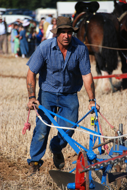 Ray Dawkins on the one-share, two horse-power, hand-held plough pulled by Molly and Barney. Ray won the Best Pair event at the National Ploughing Championships at Soham, Cambridgeshire in October 2009