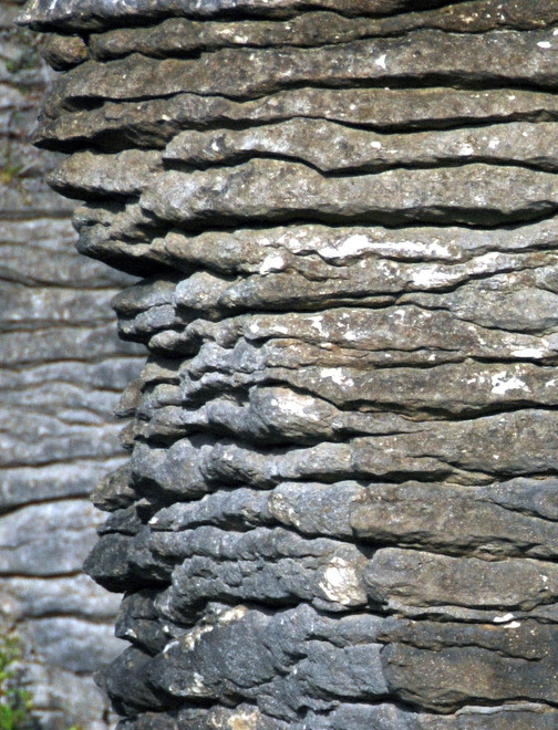 Detail of stylobedding of the Punakaiki limestone and mudstone in-fills.