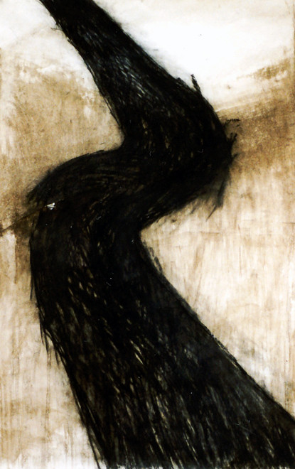 Scarred Earth (Detail) (Charcoal and natural pigments)  Fergus Murray Drawing