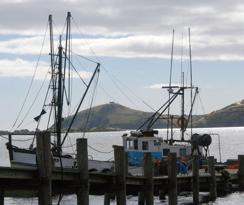 Boat tied up at the Otakou wharf with Taiaroa Head and the Royal Albatross Observatory in the background