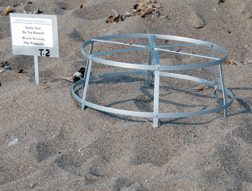 (,Sheet1!$Protecting turtle eggs on the Akamas Peninsula (June 2012).